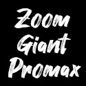 Plaquettes Zoom / Giant