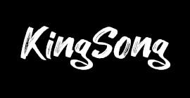 Plaquette de frein trottinette électrique KingSong