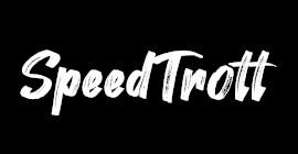 Plaquette de frein trottinette électrique SpeedTrott