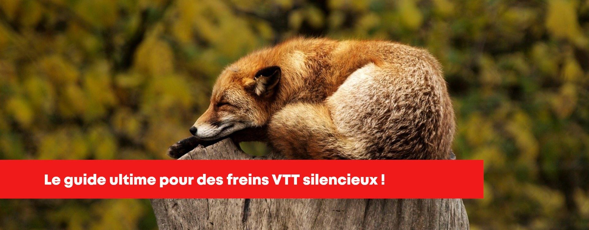 Freins à disque VTT bruyant, STOP!
